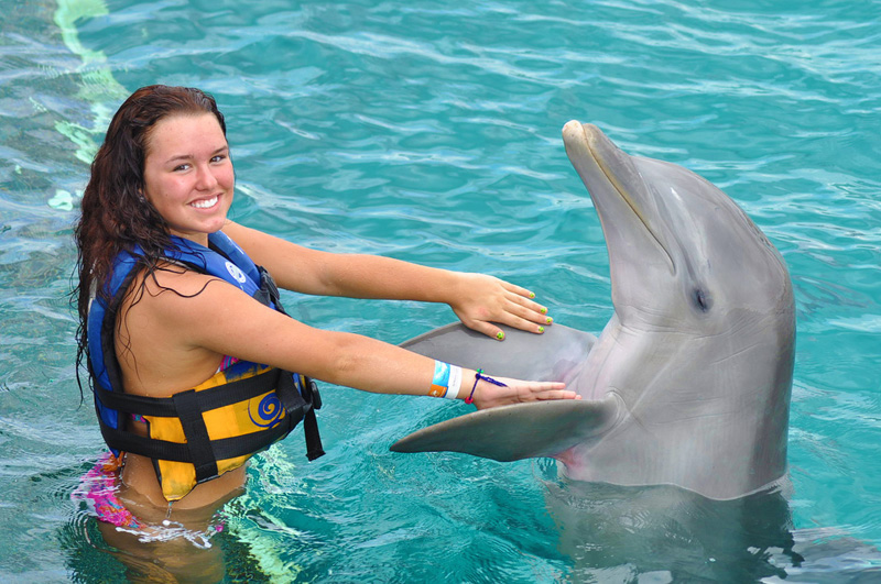 Swim with Dolphins in Cancun, Isla | Dolphin Discovery Swimming With Dolphins on swimming dolphin game, funny dolphins, feeding dolphins, types of dolphins, red dolphins, cute dolphins, dolphin facts, pictures of dolphins, whales and dolphins, swimming pool, swimming w dolphins, real dolphins, there are really killer dolphins, kissing dolphins, swimming penguins, pod of dolphins, dreaming of dolphins, purple dolphins, bottlenose dolphin, women and dolphins, what's the difference porpoises and dolphins, discovery cove dolphins, florida dolphins, dolphin gifts, baby dolphins,