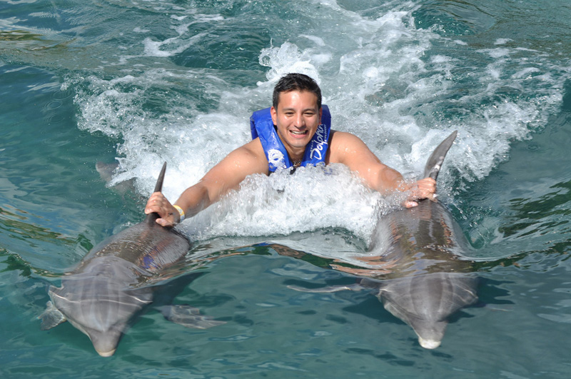 Swim with Dolphins in Riviera Maya   Dolphin Discovery