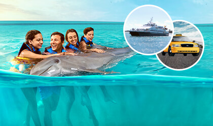Dolphin Encounter + Ferry + Transfer