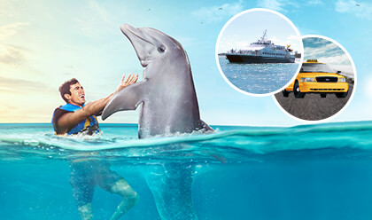 Dolphin Swim Adventure + Ferry + Transfer