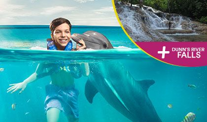 Dunns River Fall + Dolphin Encounter