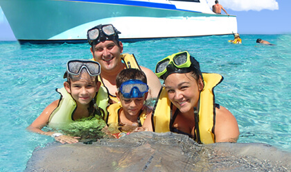 Dolphin Lovers' Swim and Stingray