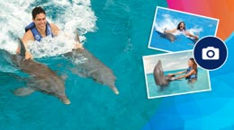 Dolphin Royal Swim VIP Memories