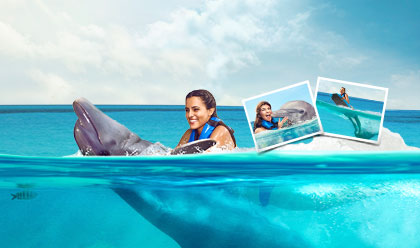 Dolphin Swim and Ride Memories