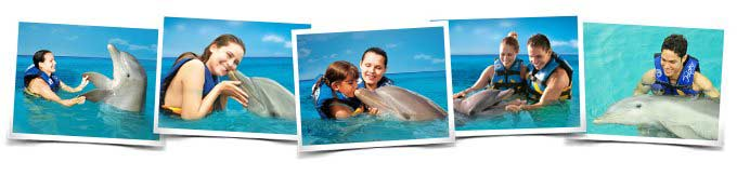 Dolphin Encounter Vallarta