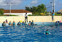 DOLPHIN DISCOVERY PUNTA CANA RECIEVES PRESTIGIOUS ACCREDITATION FROM THE ASSOCIATION OF ZOOS AND AQUARIUMS (AZA)