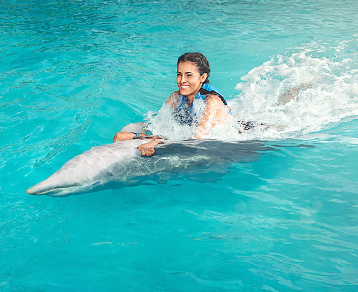 Swim with Dolphins in Mexico & The Caribbean | Dolphin Discovery Swimming With Dolphins on swimming dolphin game, funny dolphins, feeding dolphins, types of dolphins, red dolphins, cute dolphins, dolphin facts, pictures of dolphins, whales and dolphins, swimming pool, swimming w dolphins, real dolphins, there are really killer dolphins, kissing dolphins, swimming penguins, pod of dolphins, dreaming of dolphins, purple dolphins, bottlenose dolphin, women and dolphins, what's the difference porpoises and dolphins, discovery cove dolphins, florida dolphins, dolphin gifts, baby dolphins,