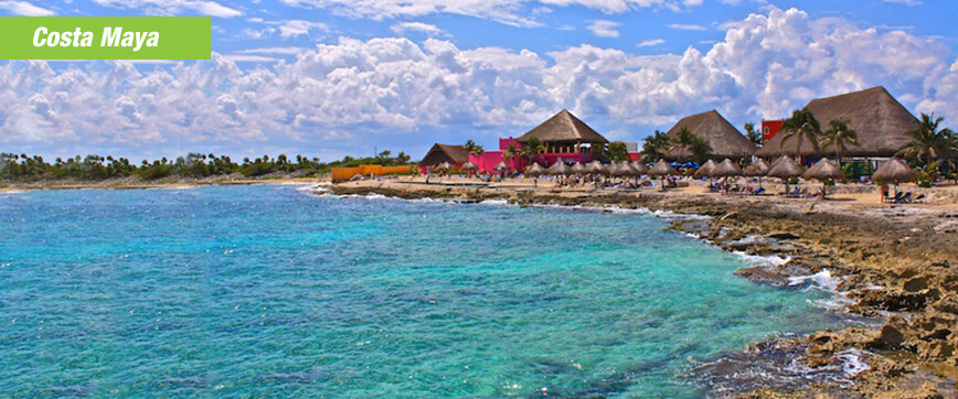 Costa Maya Swim With Dolphins Wonderful Location