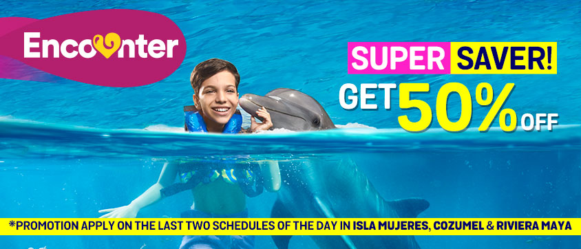 Dolphin Encounter Super Save 50%