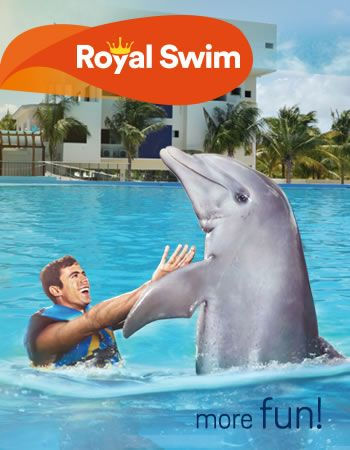 Royal Swim Program