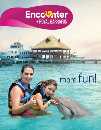 Dolphin Encounter + Royal Garrafon Program