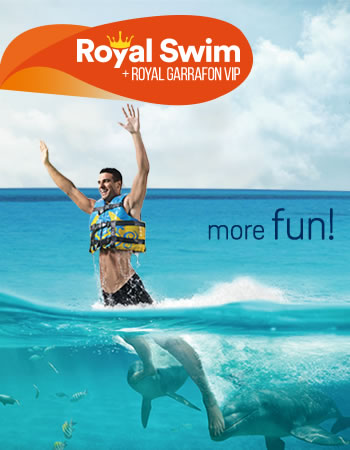 Dolphin Royal Swim + Royal Garrafon VIP Program