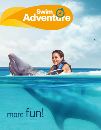Swim Adventure Memories Program