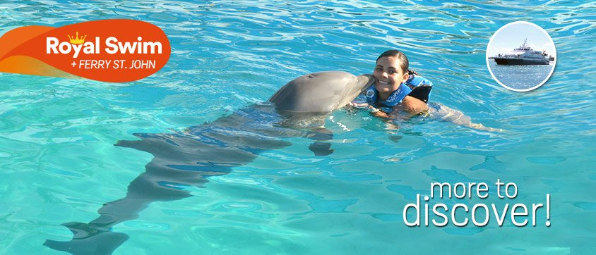 Dolphin Swim Adventure + Ferry Program